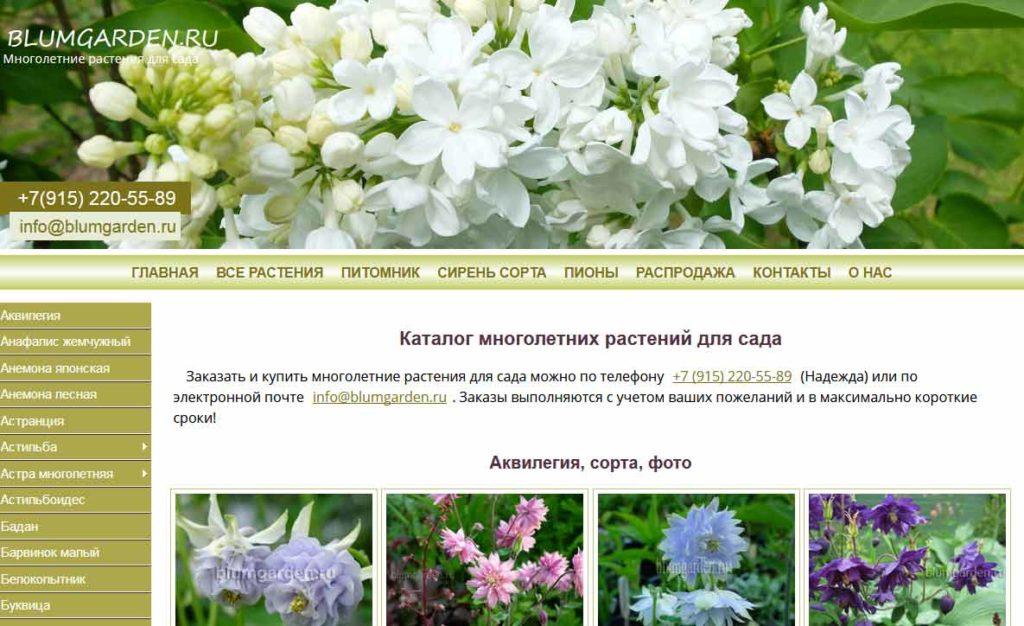 старый blumgarden.ru © blumgarden.ru