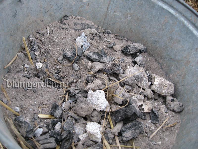 Зола - костная мука своими руками © Blumgarden.ru