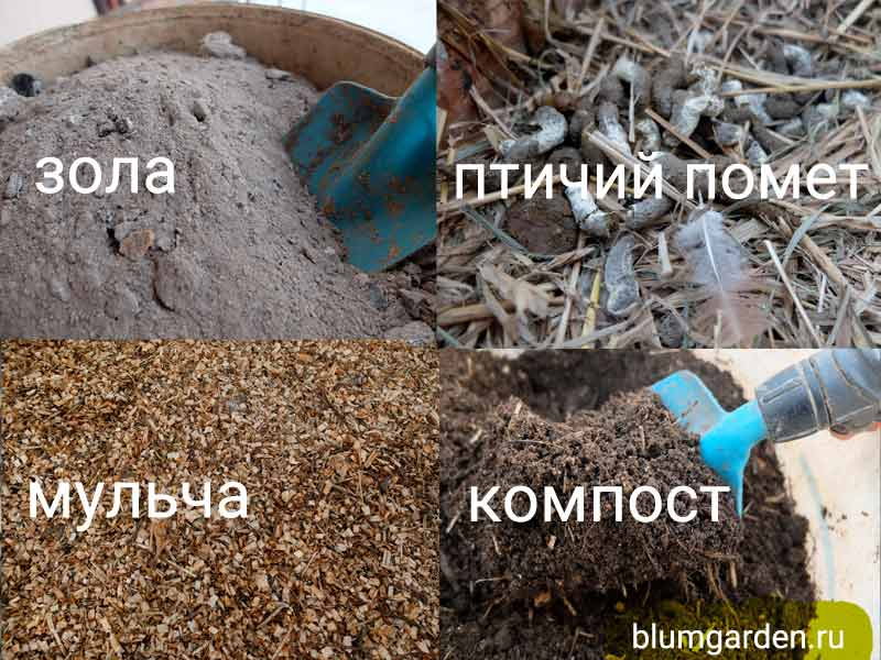 Зола, птичий помет, мульча, компост - питание растений © Blumgarden.ru