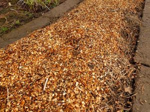 Мульчируем грядки измельченными обрезками веток лиственных деревьев © Blumgarden.ru